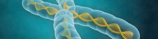 Conférence «Bible et science» à Mulhouse, le généticien John Sanford aurait démontré les leurres de la théorie de l'évolution